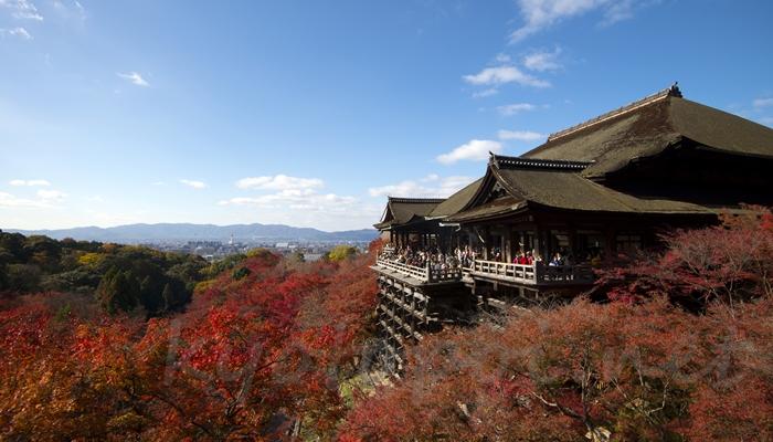 清水寺の本堂(舞台)と紅葉