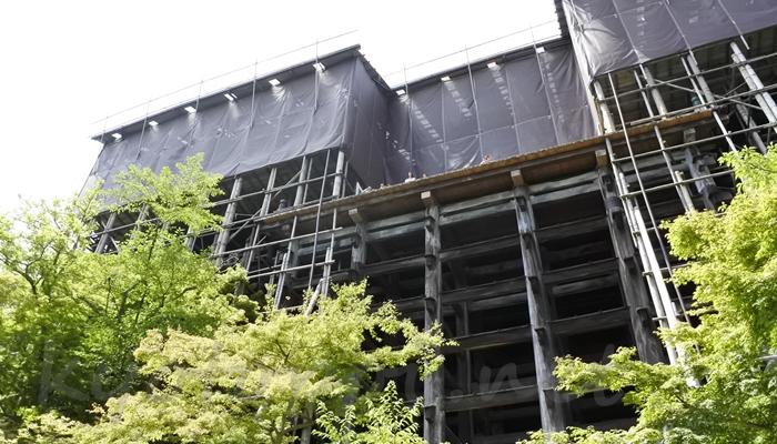 清水寺の本堂(舞台)を下から見上げる