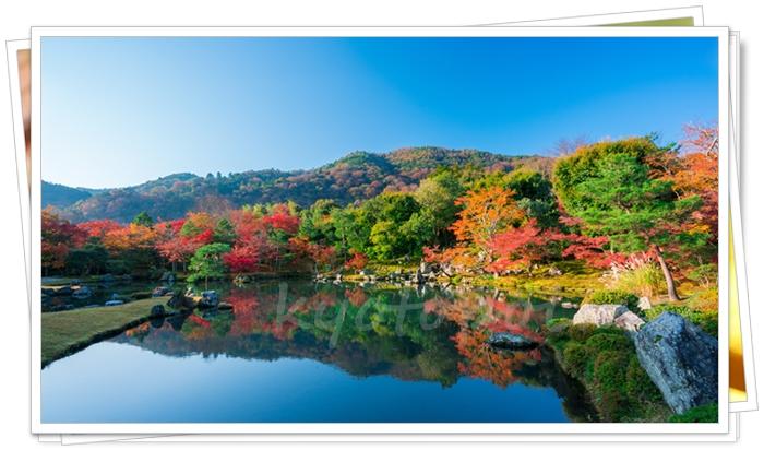 嵐山にある天龍寺の庭園の借景がステキ