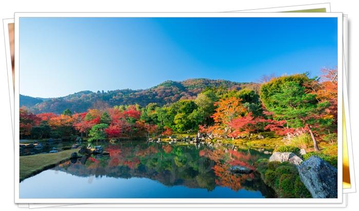 天龍寺から見た嵐山の紅葉