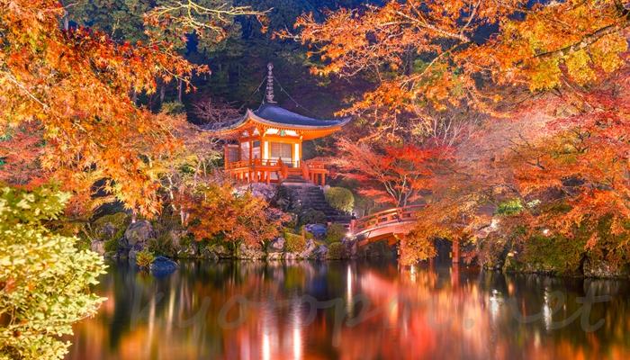 京都の紅葉ライトアップ 醍醐寺の三宝院庭園の弁天堂と弁天池ライトアップ