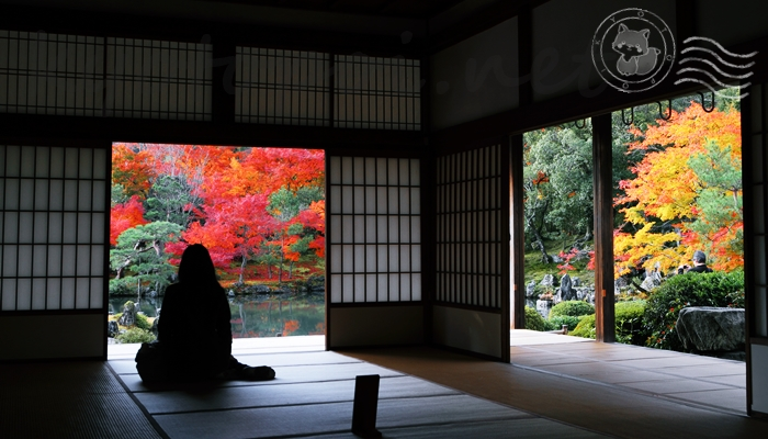 天龍寺の紅葉の季節の見どころ 額縁庭園