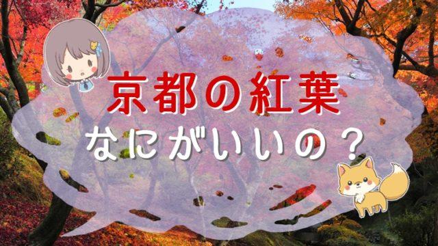 京都の紅葉はなにがいいの?