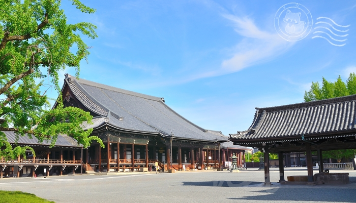 京都の西本願寺 阿弥陀堂と御影堂