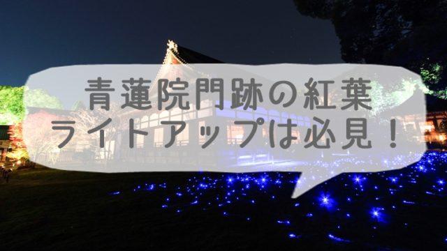 青蓮院門跡の紅葉 秋の夜間ライトアップは必見!