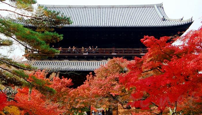 南禅寺の三門と紅葉の景色