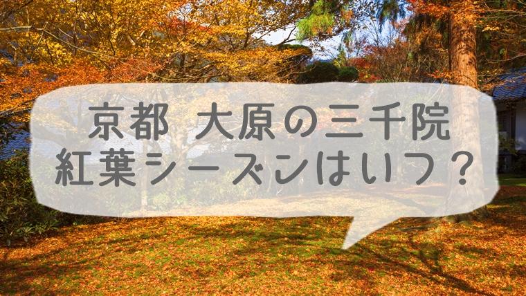 京都 大原 三千院の紅葉シーズンはいつ?