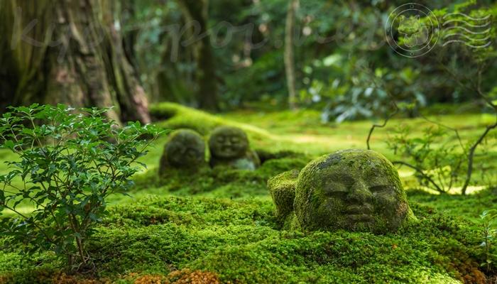 京都 大原の三千院のわらべ地蔵
