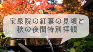 京都の大原にある宝泉院の紅葉の見頃と秋の夜間特別拝観