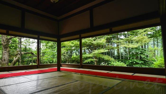 京都の大原にある宝泉院の額縁庭園「盤桓園(ばんかんえん)」