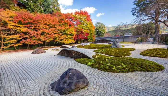 実相院門跡の庭園の紅葉の見頃時期はいつ?
