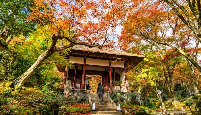 京都 常寂光寺の仁王門と紅葉