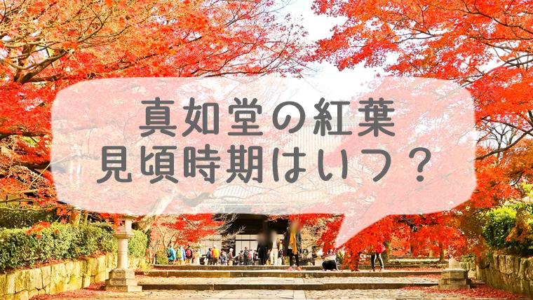 京都 真如堂の紅葉の見頃時期はいつ?