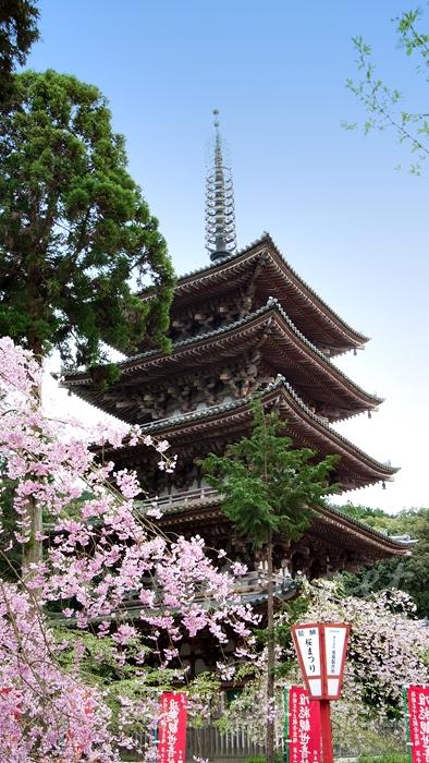 京都の世界遺産 醍醐寺の五重塔