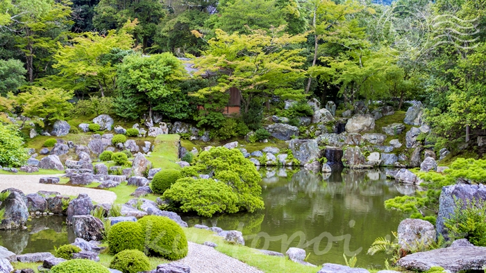 京都の世界遺産 醍醐寺の三宝院庭園