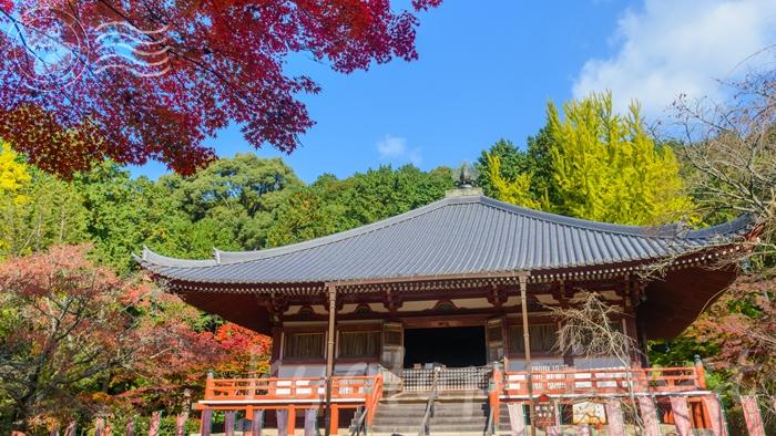 京都の世界遺産 醍醐寺の観音堂