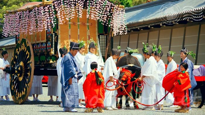 京都の世界遺産 上賀茂神社(賀茂別雷神社)の葵祭(賀茂祭)
