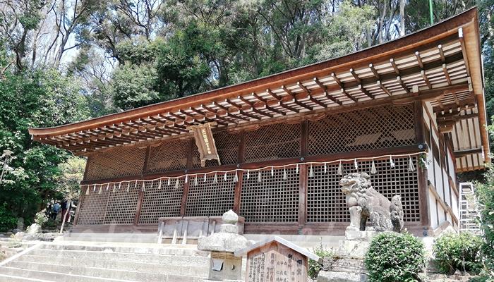 京都の世界遺産 宇治上神社の本殿