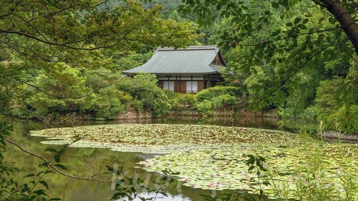 京都の世界遺産 龍安寺の鏡容池
