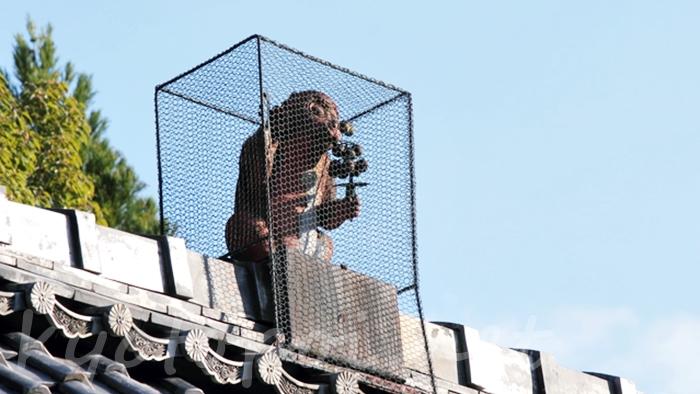 赤山禅院  鬼門守護の猿